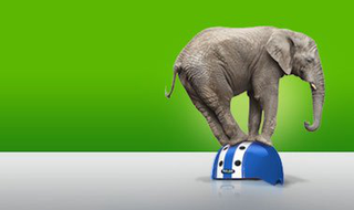 Lean Six Sigma: Green Belt Certification Project