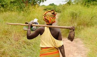 Landscape Leadership: Catalyse Sustainable Development in Landscapes