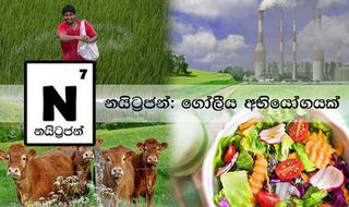 Nitrogen: A Global Challenge (Sinhalese)