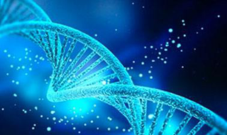 AP® Biology - Part 3: Evolution and Diversity