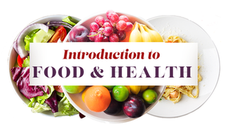 Introduction To Food & Health