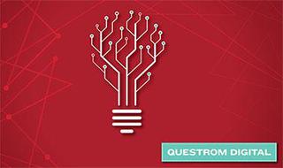 Driving Digital Innovation through Experimentation