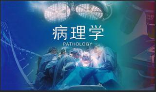 Pathology | 病理学