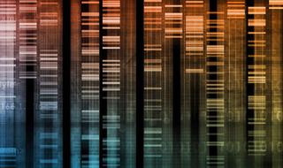 La genetica tra scienza, storia e società