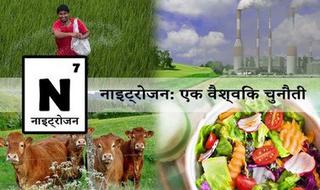 Nitrogen: A Global Challenge (Hindi)