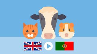 ANIMALS 1   European Portuguese Vocabulary - Course 3