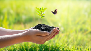 Environment Conservation Course