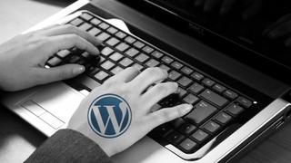 Enhanced WordPress Strategies For Business