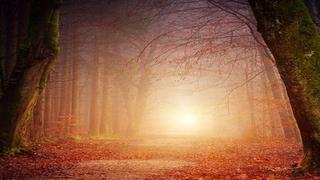 Fairy Stories: Their Magic, Truths and Teachings