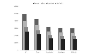 Excel 2019/2016 - Minimalist. Professional. Aesthetic Charts