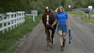 Essential Horsemanship Skills: How to Handle and Ride Horses